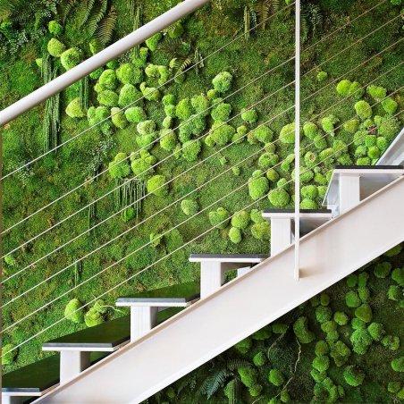 Mur Végétal Stabilisé MUR VEGETAL Création Originale de Déco Végétale