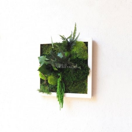 Tableaux Végétal Stabilisé New Santa Création Originale de Déco Végétale
