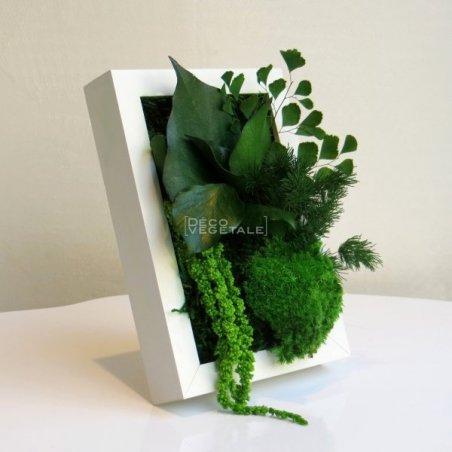 Tableaux Végétal Stabilisé Sweet Box Création Originale de Déco Végétale