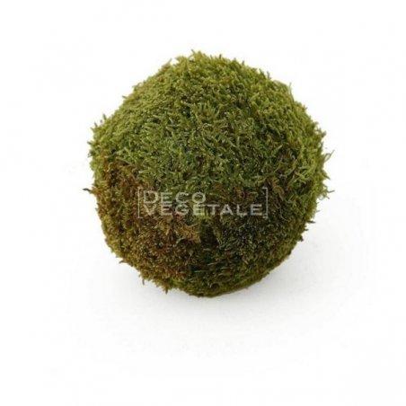 Composition Florale Stabilisée Boule de mousse de forêt Création Originale de Déco Végétale