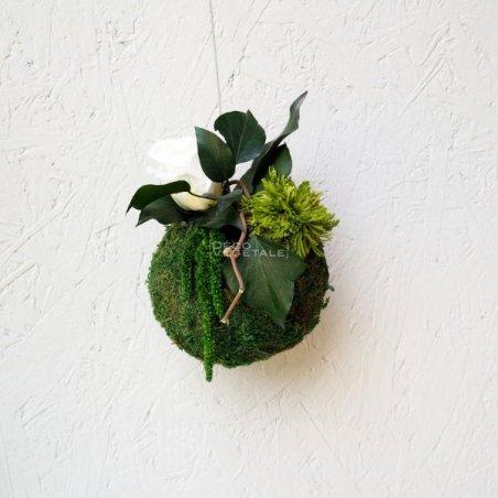 Composition Florale Stabilisée Kokedama Tenju-an Création Originale de Déco Végétale